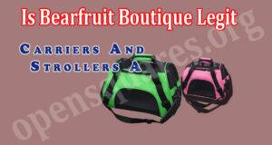Read more about the article Is Bearfruit Boutique Legit {June 2021} Fair Reviews!